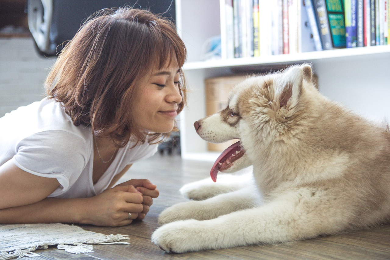 7 Sweet and Subtle Signs Your Dog Loves You