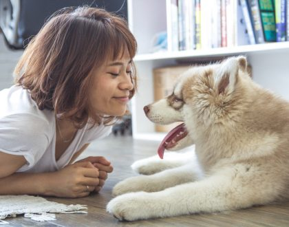 How Your Pet May Improve Your Mental and Emotional Health